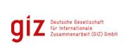 GIZ logo new